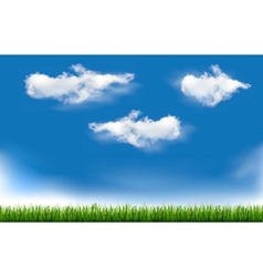 Background with blue sky and grass vector