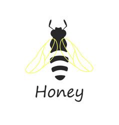 Bee honey vector