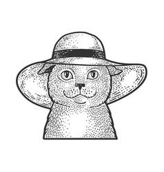 cat in wide brimmed hat sketch vector image