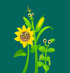 Corn peas sunflower funny cartoon character vector