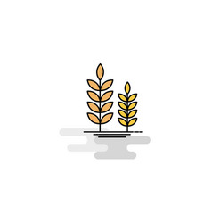 flat wheat icon vector image
