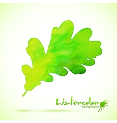 Green watercolor painted oak leaf vector