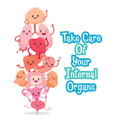 human internal organs cartoon characters funny vector image