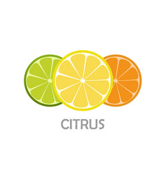 Lemone lime orange icon citrus refreshing vector
