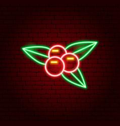 rowanberry neon sign vector image