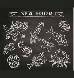 seafood chalk contour on blackboard vector image