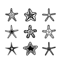 starfish set underwater background cartoon vector image