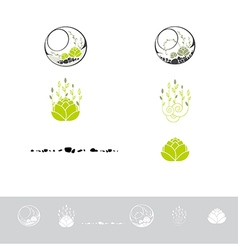 Green Terrarium With Plants vector image