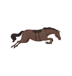 black running horse equestrian professional sport vector image
