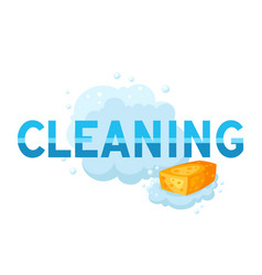 housekeeping cleaning background vector image
