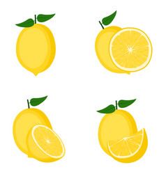 Lemon whole fruit half slice vector