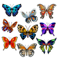Multicolored butterflies set vector