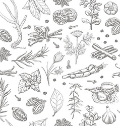 Seamless pattern with spices and herbs on a white vector