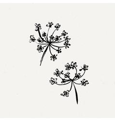 Set of milfoil or wet dandelion flowers vector image