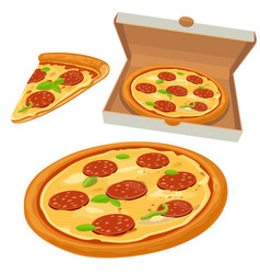 Whole pizza and slices pizza pepperoni in open vector