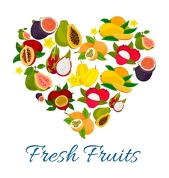 Heart emblem of fresh exotic tropical fruits vector image