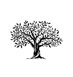 Olive tree silhouette icon isolated on white vector image