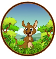 kangaroo with forest background vector image vector image