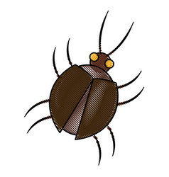 virus bug hacking computer software vector image