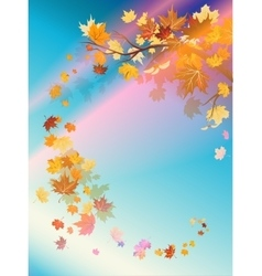 Autumn leaves and beautiful sky vector
