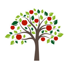 Flat color single apple tree vector