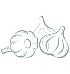 Garlic pictograph vector