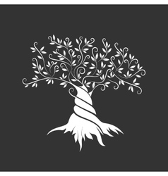 Olive tree outline curl silhouette icon isolated vector image