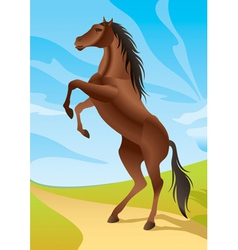 Wild horse in the fields vector image