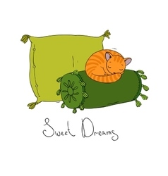 Beautiful pillows and cute cat vector image vector image