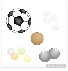 Set of Different Sport Balls on White Background vector image vector image
