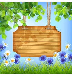 Wooden Sign Board Summer Day Natural Background vector image vector image