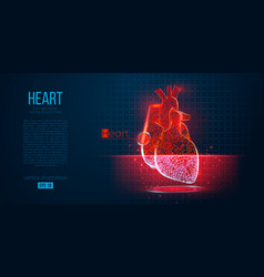 abstract silhouette polygonal organ heart vector image
