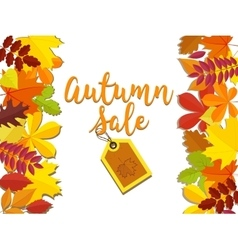 autumn sale fall sale design can be used vector image