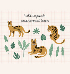 creative hand drawn collection of leopards vector image