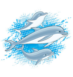Dolphins and water splash vector