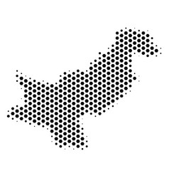 Honeycomb pakistan map vector
