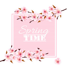 nature spring background with cherry blossoms vector image