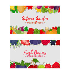 Vegetables berries label voucher for sale vector
