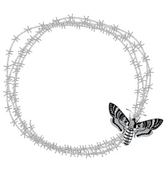 butterfly and barbed wire vector image vector image