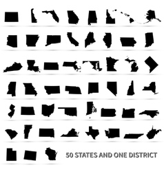 United States of America 50 states and 1 federal vector image vector image