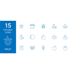 15 fruit icons vector image