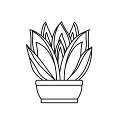 cartoon cactus in a pot vector image