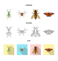 Design of insect and fly sign set of vector