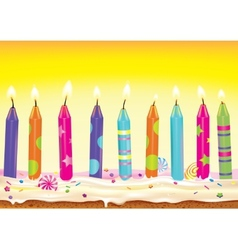 set burning candles on cake vector image