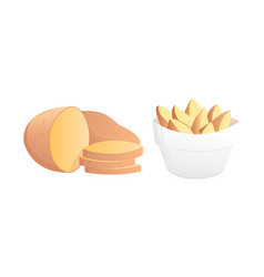 Set potatoes isolated potato vector