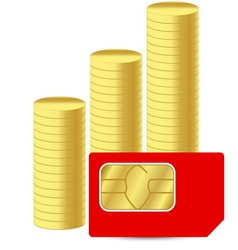 Sim card with coins vector image