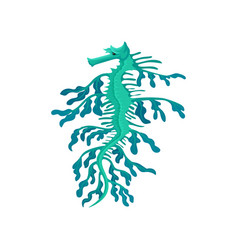 small weedy sea dragon turquoise seahorse marine vector image