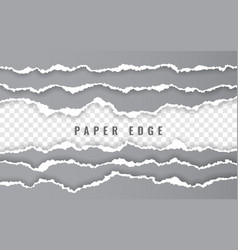torn paper edge ripped squared paper strips vector image