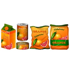 Dehydrated orange in different packaging vector image