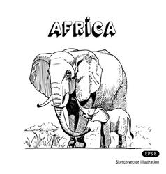 Elephants in African savanna vector image